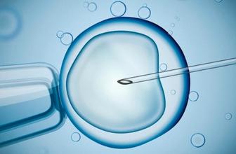 Ölen oğullarının spermiyle torun sahibi oldular!