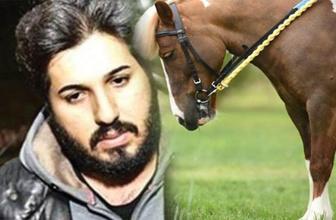Reza Zarrab artık 'at koşturamayacak'
