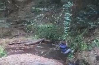 Tarzan'a özendi, sarmaşık kopunca suya düştü