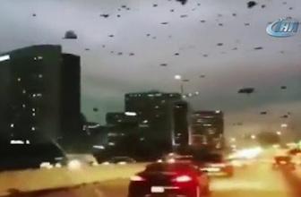 ABD'de yağma başladı! Florence kasırgasında ölümler artıyor...