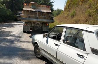 Kamyonla yılan öldürmek isterken otomobile çarptı