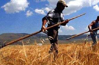 Borcunu ödemeyen çiftçiye kötü haber! Destek ödemesinden kesilecek