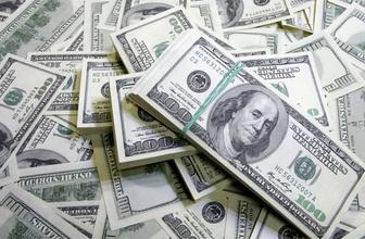 Rusya'dan dolar adımı rezervlerini eritti