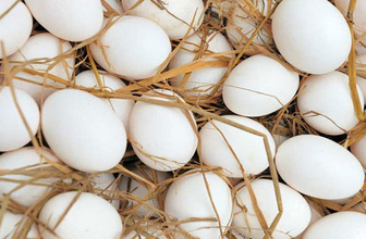 İşte bir yumurtanın organik olup olmadığını anlama yöntemleri