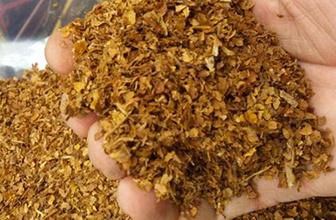 İthal tütünde vergi sıfırlandı