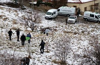 Kayseri'de korkunç olay! Sokak köpekleri öğrencileri parçaladı