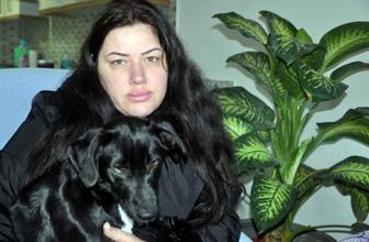 Şiddetten kaçan İngiliz kadın Muğla'da hayvan barınağına sığındı!