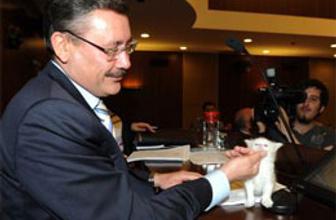 AK Parti'den Gökçek'e Expo darbesi