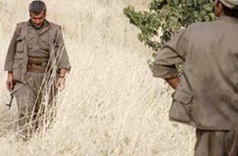PKK'lı terörist suçüstü yakalandı