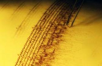 Şili'de 5,9 büyüklüğünde deprem