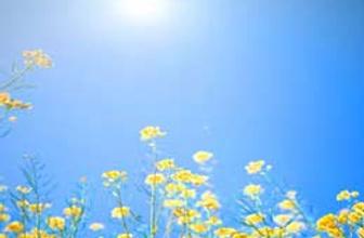 Yeni haftada bahar müjdesi!