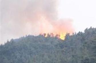 Yangın Türkiye'ye sıçradı!