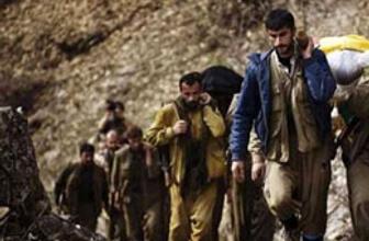 Bingöl'de iki PKK'lı öldürüldü