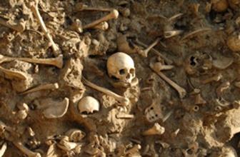 Ermeni soykırımının kanıtı