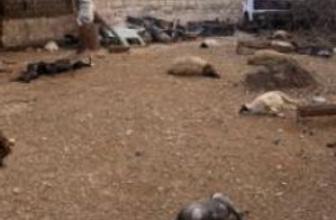 Şam: Kimyasal silah soruşturması genişletilemez