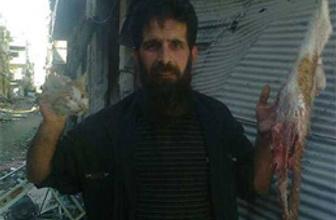 Suriye'de 'kedi eti yenebilir' fetvası!