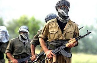 PKK yol kesip köylüleri darp etti