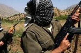 'PKK'yı bitirecek tek aktör...'