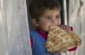 Bodrum'daki mülteciler gönderiliyor!