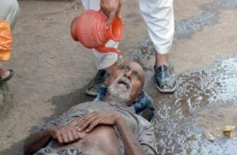 Dünya şokta 45 derece sıcaklık 800 ölü
