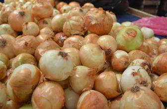 Soğan fiyatları daha da yükselecek