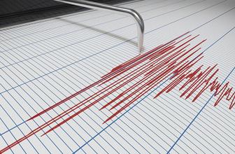 Van'da korkutan deprem! Kaç şiddetindeydi?