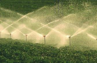 Tarımda Milli Birlik Projesi'nin detayları belli oldu tarıma özel holding geliyor