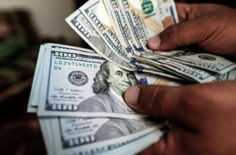 Dolar düşecek mi cevabına uzmanından kötü yanıt