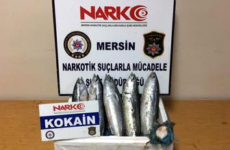 Mersin'de balıkla uyuşturucu sevkiyatı polise yakalandı