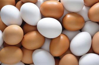 TÜİK açıkladı tavuk yumurtasından zam çıktı