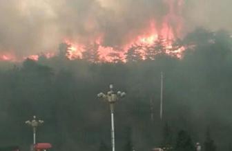 Çin'de orman yangınında 24 itfaiyeci öldü