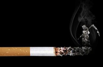 Monte Carlo kaç para oldu sigara zammı sonrası güncel fiyat