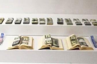 Bir ayın en yüksek seviyesi gören dolar yüksek seviyelerde seyrediyor