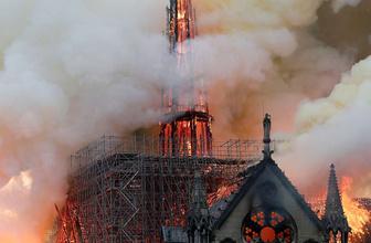 Notre Dame'ın çatısında yaşayan 200 bin arı yangından sağ kurtulmuş!