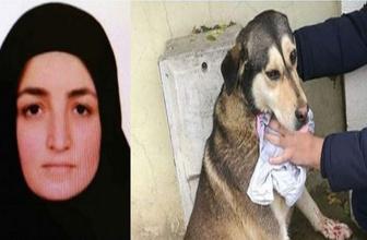 Cani kadın sokak hayvanlarını kesip yerken yakalandı!