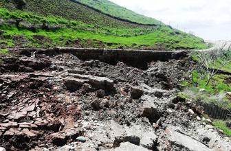 Siirt'te aşırı yağışlar nedeniyle fıstık ağaçları göçük altında kaldı