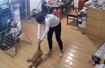 Ev arkadaşının kedisine işkence yapan kadın kamerada