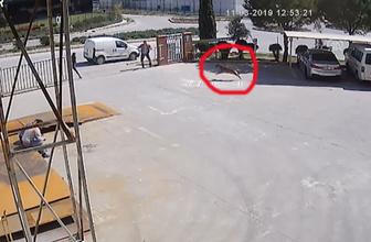 İş görüşmesine giden kadına köpeğin saldırması kamerada