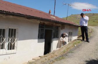 Elazığ Başıboş köpeklerin saldırısına uğrayan yaşlı kadın öldü