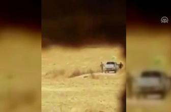 YPG/PKK'lı teröristler sivillere ait arazileri ateşe verirken görüntülendi