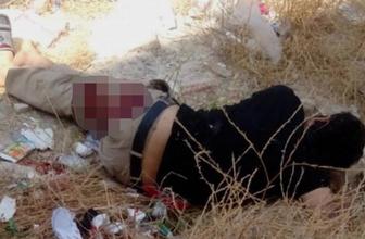 Şanlıurfa'da bir kişi yolda yürürken tabancayla vuruldu