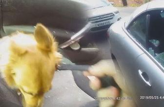 Polis güneş altındaki aracın içindeki köpeği böyle kurtardı