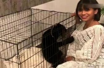 Köpek sandığı ayıyı evine götüren şarkıcı mahkemelik oldu