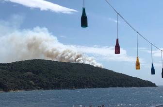Heybeliada'da korkutan yangın! İstanbul Valiliği'nden açıklama var