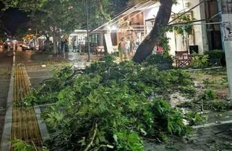 Yunanistan'da fırtına çok sayıda ölü ve yaralı var