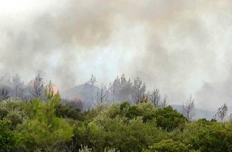 Muğla'daki ikinci yangın evlere ulaşamadan söndürüldü