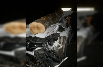 Ordu'da otomobilin üzerine tomruk düştü 3 yaralı