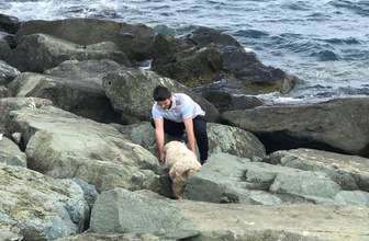Kayalıklara sıkışan köpeği sahilden geçen bir genç kurtardı