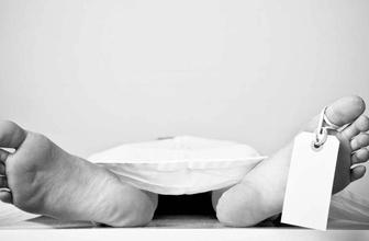 Avrupa'da ölümlerin sebepleri açıklandı! En çok hangi hastalıklar ölüme götürdü?