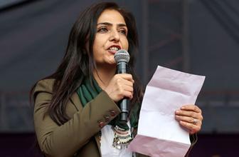 HDP'li başkan ve Meclis üyelerine soruşturma